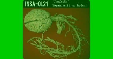 İnsan bedeninde uzaylı - INSA-OL21INSA-OL21 INSA-OL21